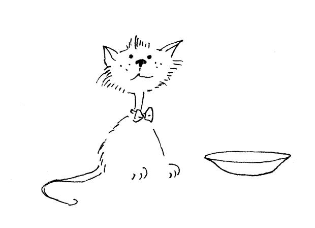 kotek-mleczko