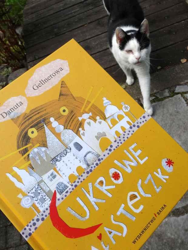książka kot