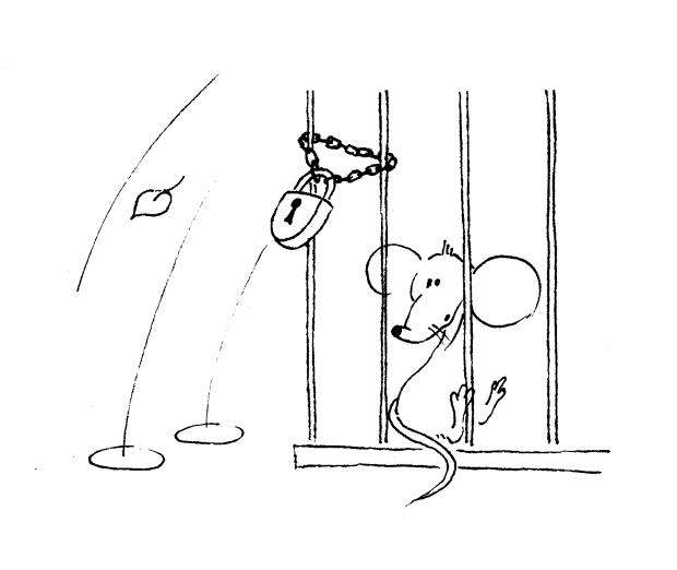 myszka wiezienie
